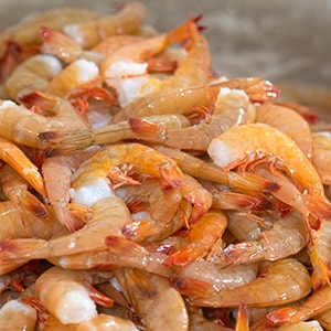Premium Gulf Wild Caught Shrimp can provide plentiful protein