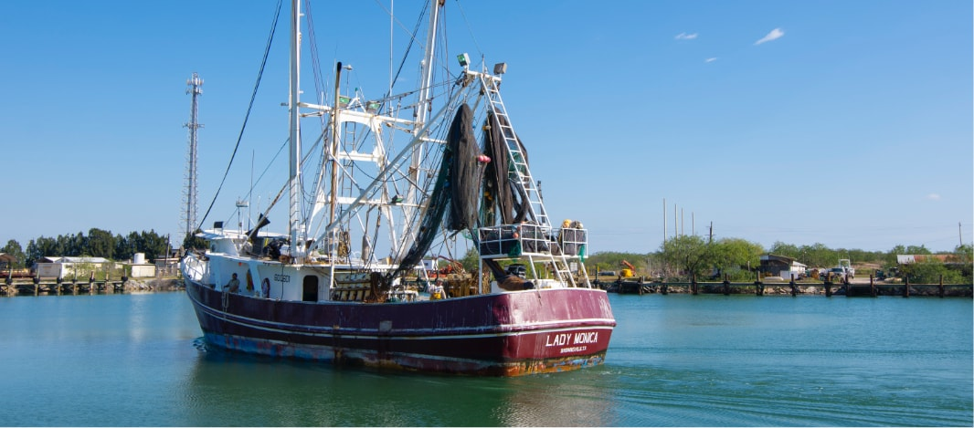 Sustainable Shrimping Boat out in the Water